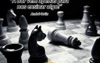 295 palestrante_de_vendas andré_ortiz convenção_de_vendas palestra_de_vendas