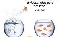 319dicas_de_vendas palestrante_de_vendas andré_ortiz palestras_de_vendas convenção_de_vendas