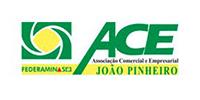7374A_Logos_Site_Ace